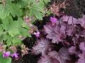 Tuinontwerp Woerden verhoogde plantenbakken