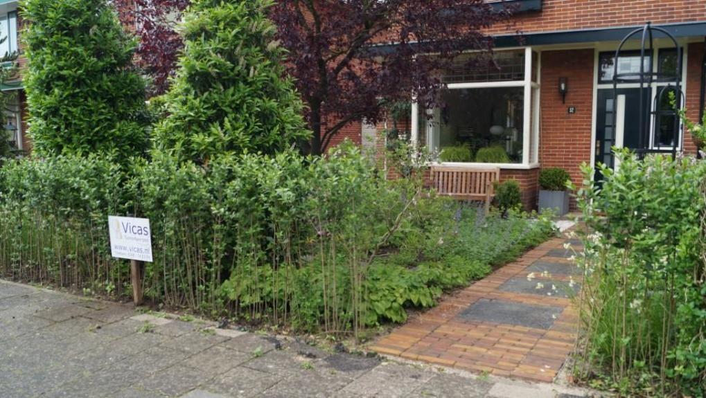 Groene voortuin tuinontwerp woerden vicas tuinontwerpen - Boom ontwerp ...