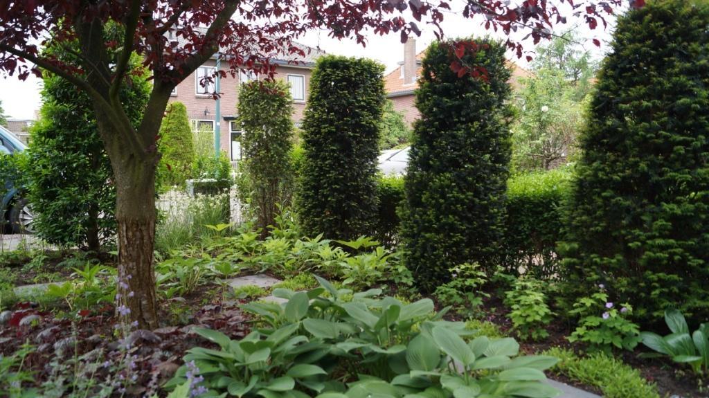 Groene voortuin tuinontwerp woerden vicas tuinontwerpen for Tuin opleiding