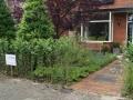 Tuinontwerp groene voortuin met boom