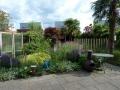 ontwerp exotische tuin met palmbomen