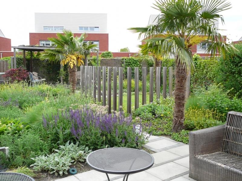 Exotische tuin met palmbomen vicas tuinontwerpen for Opleiding tuin