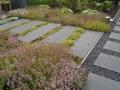 stapstenen met kruiptijm - tuinontwerp