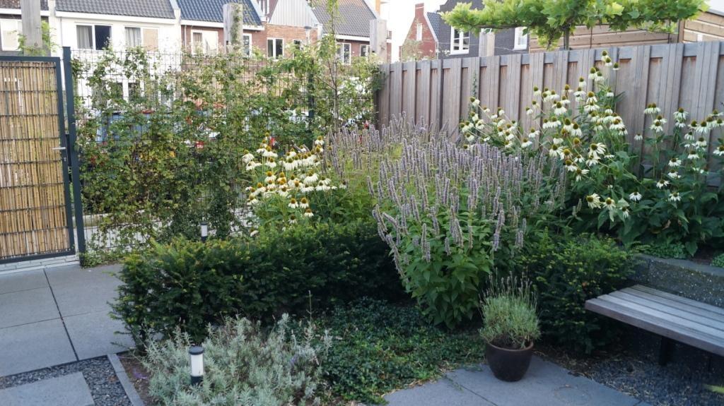 Tuinontwerp kleine tuin verhoogde border verrijdbare for Tuinontwerp stadstuin