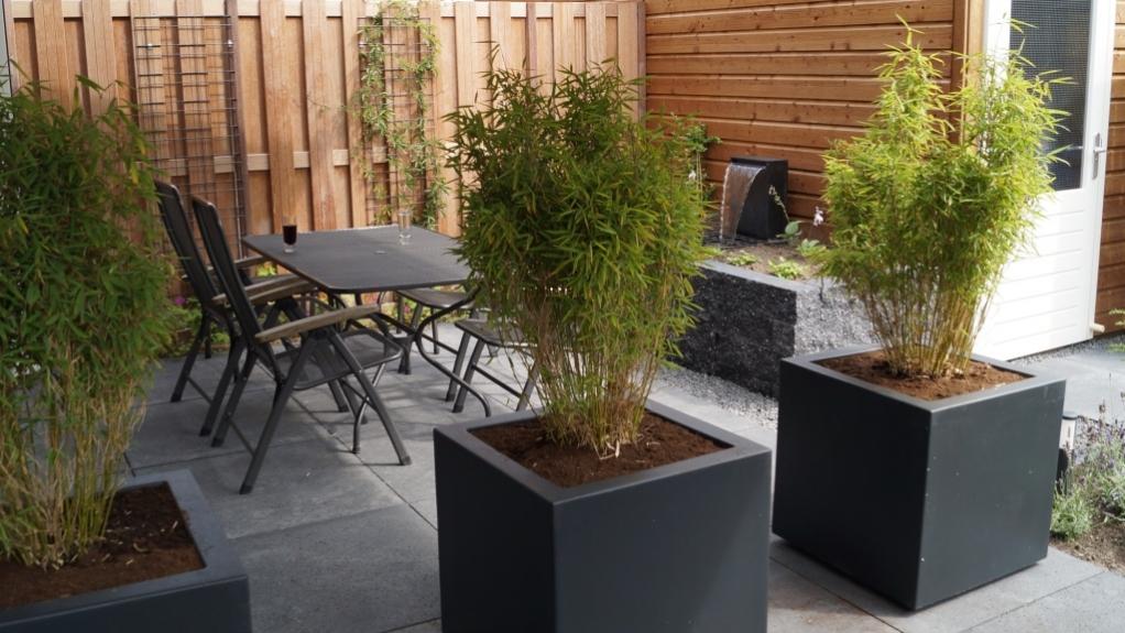 Tuinontwerp kleine tuin verhoogde border verrijdbare for Kleine stadstuin ideeen