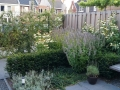 Tuinontwerp kleine tuin Woerden