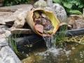 tuinontwerp romantische tuin met vijver en waterloopje