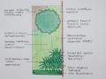 tuinontwerp beplantingsplan Linschoten