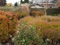 tuinontwerp herfstkleuren beplanting Utrecht