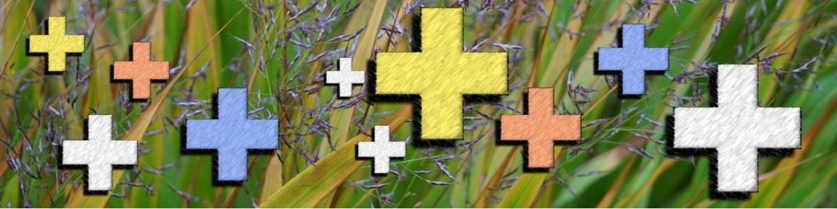 10 voordelen van een tuinontwerp - De meerwaarde van een tuinarchitect