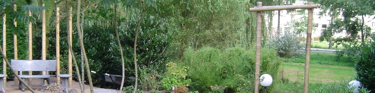 Japanse sfeer - Japanse tuin - tuinarchitect
