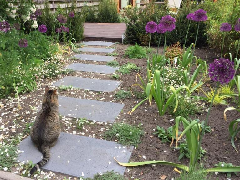 Tuinontwerp-tuinkantoor-veranda-tuinarchitect-Woerden-Montfoort