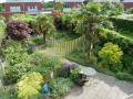 ontwerp exotische tuin