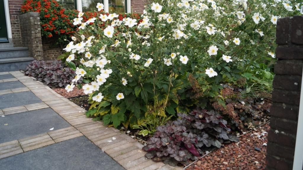 tuinontwerp tuinpad keramische tegels