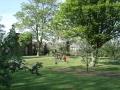 landschapsbeheer vakantiepark - huizen in het groen