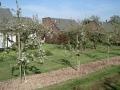 landschapsbeheer vakantiepark - snoeiwerk fruitbomen