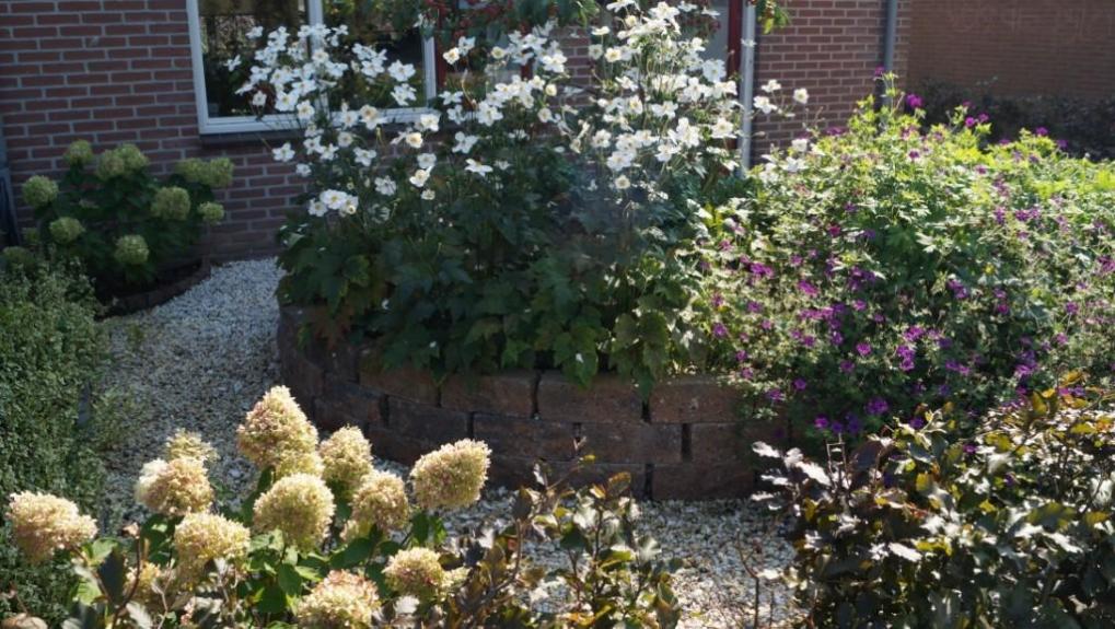 Montfoort Utrecht tuinontwerp voortuin verhoogde bak