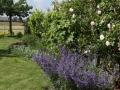 tuin metamorfose - zichtlijn naar weilanden