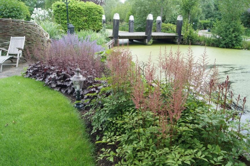 Tuinarchitectuur villatuin - waterkant met Astilbe