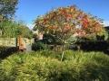 tuinontwerp beplanting herfst - Linschoten Utrecht
