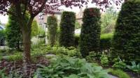 tuinontwerp voortuin Utrecht Woerden schaduwtuin