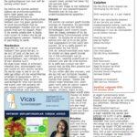 interview Vicas Tuinontwerpen OHD (2/2)
