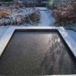 winterbeeld spiegelvijver - foto Vicas Tuinontwerpen