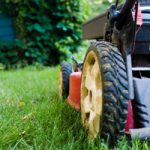 Onderhoudsarme tuinen